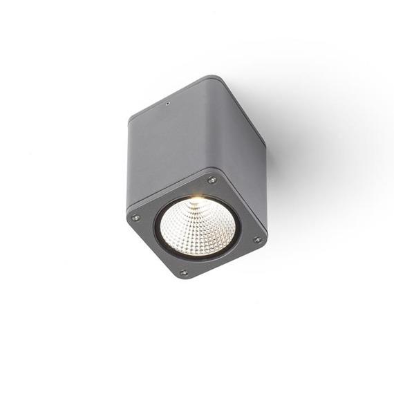 Mizzi R11966 Plafon Redlux